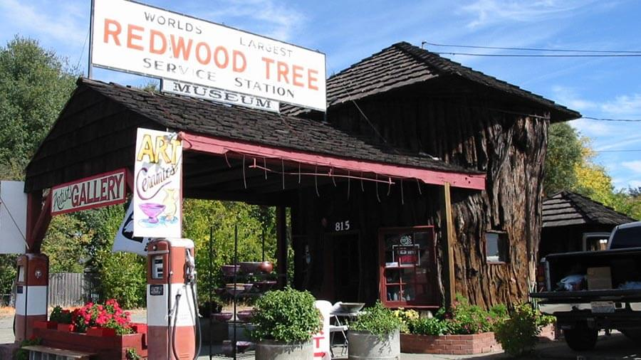 """World's Largest Redwood Tree Service Station"". Possibly the only one as well. Photo: http://bit.ly/1iG6bGD"