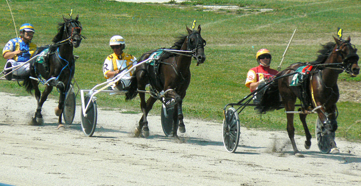 Harness Racing, Bowling Green, Ohio | http://bit.ly/2dNzm9Q